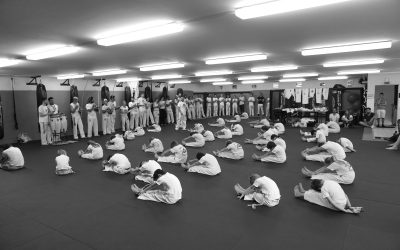 Capoeira Pound for Pound